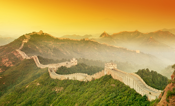 7 Days Tour from Beijing to Terracotta Soldiers and Panda