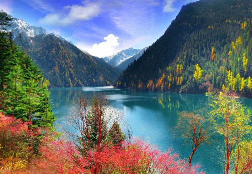 The Colorful Forests in Jiuzhaigou Valley