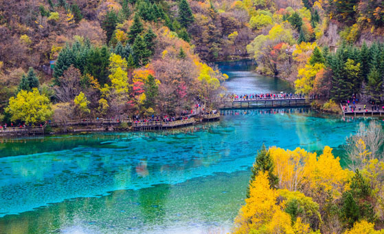 6 Days Chengdu Dujiangyan Jiuzhaigou Tour (flight back to Chengdu)