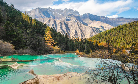 5 Days Classic Chengdu & Jiuzhaigou Tour (by Flight)