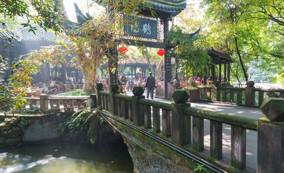 Chengdu Half Day Bike Tour