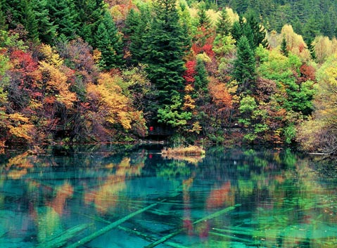 The Mirror Five-color Lake in Jiuzhaigou Valley