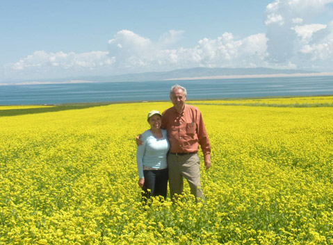 Qinghai Lake in Rape Flower Season