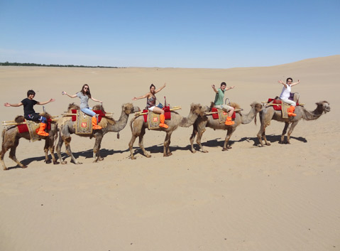 Camels Riding in Taklamakan Desert