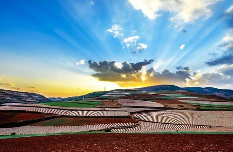Dongchuan Red Lind Sunrise