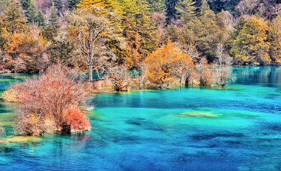 4 Days Chengdu Jiuzhaigou Photography Tour