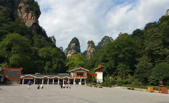 6 Day Zhangjiajie World Marvel and Panda Volunteer Tour