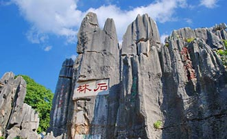 Shilin Stone Forest Travel Guide